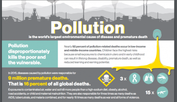 Lancet Commission on Pollution and Health